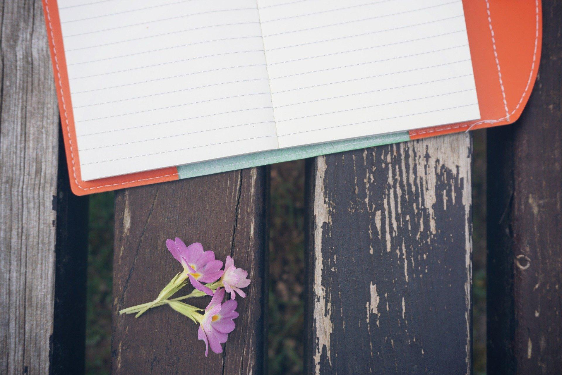 bench-student-nptebook